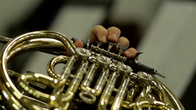 Keys And Valves Of A Concert French Horn video