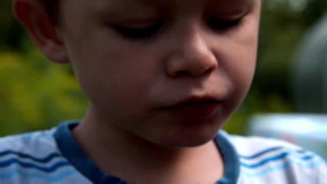Kid eating berries outdoor video