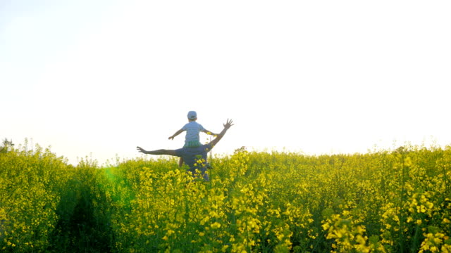 kid sits on shoulders father on meadow in grass, happy dad with boy in backlight playing airplane on background field video