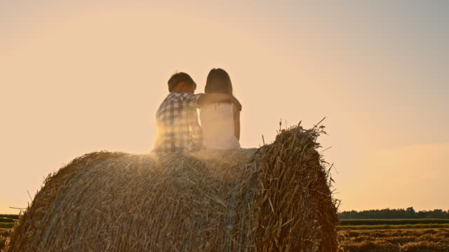 WS Kids embracing on a hay bale at sunset video