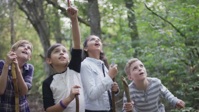 barnen utforskar skogen tillsammans - camping bildbanksvideor och videomaterial från bakom kulisserna