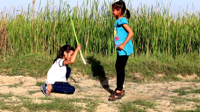 Kids Playing Skipping Game HD1080p: Two Little Girls Playing in the Nature Outdoor Portrait. cousin stock videos & royalty-free footage