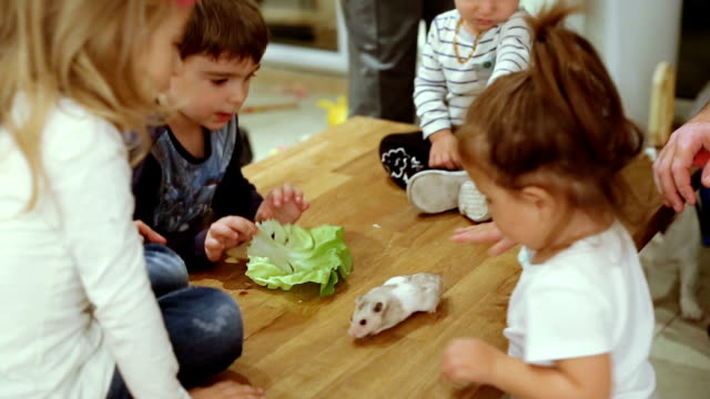 kids playing with hamster on a table