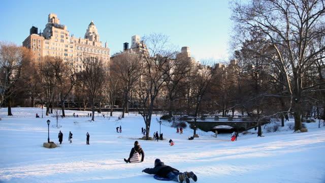 Kids Snow Sledding Shot in Central Park central park manhattan stock videos & royalty-free footage