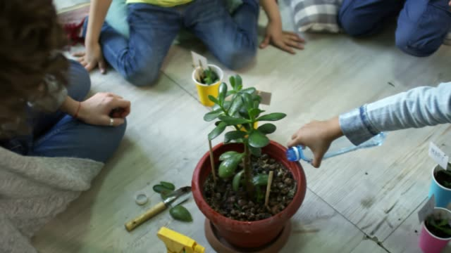 Kids Watering Repotted Plant in Kindergarten video