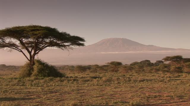 vídeos de stock e filmes b-roll de kilimanjaroworld_continents.kgm - quénia