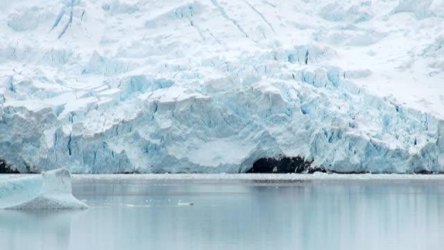 キングジョージ島で最大のサウスシェトランド島の南部で南極大陸-南極海の海岸、氷の形成-南極半島 ビデオ