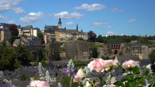 Kirchberg Luxemburg mit Blumen im Vordergrund – Video