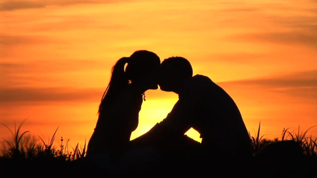 HD: Kissing At Sunset HD1080i: Silhouette of a couple sitting in the grass at sunset and kissing. Tripod. face to face stock videos & royalty-free footage