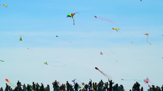 Kite Flying video