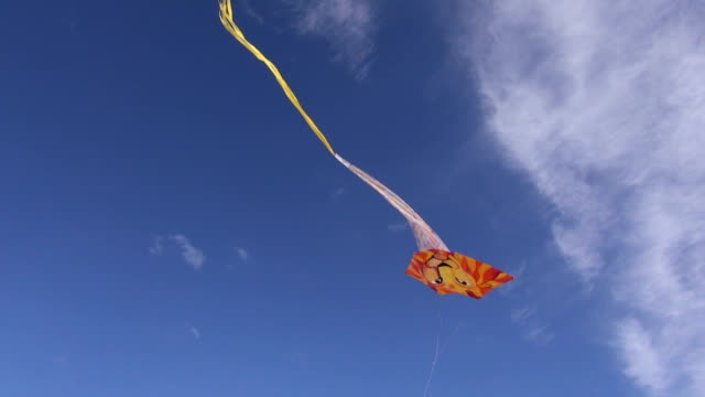 Kite with lions head video
