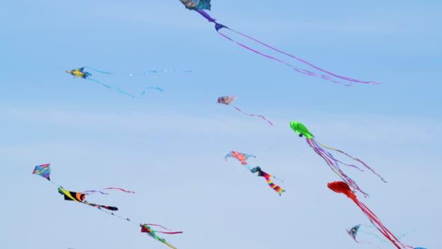 Kites Kites Kites video