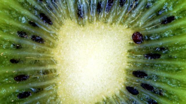 kiwi roterar medurs. närbild - kiwifrukt bildbanksvideor och videomaterial från bakom kulisserna