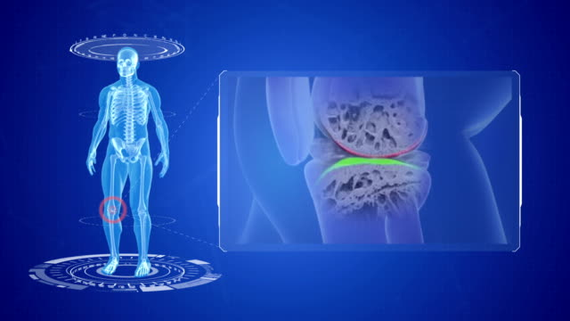knee pain animation. - hayvan eklemi stok videoları ve detay görüntü çekimi