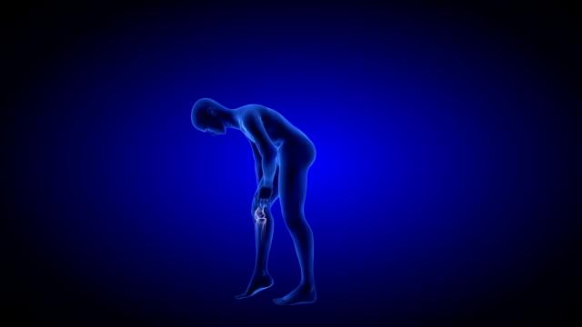 Knee Pain. Blue Human Anatomy Body 3D Scan render - rotating seamless loop video