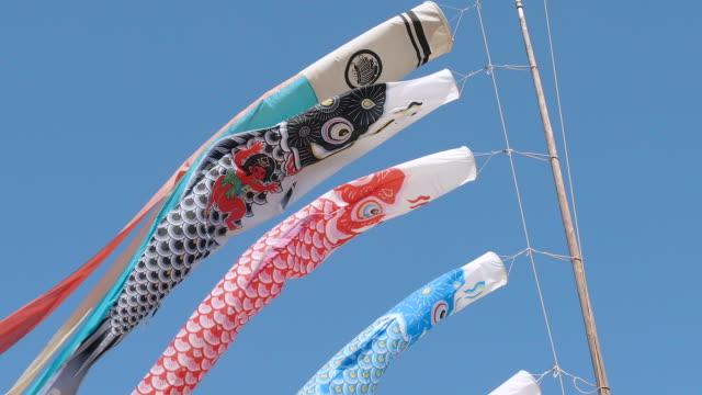 vídeos de stock e filmes b-roll de koinobori, japanease carpa serpentina, tóquio, japão - maio