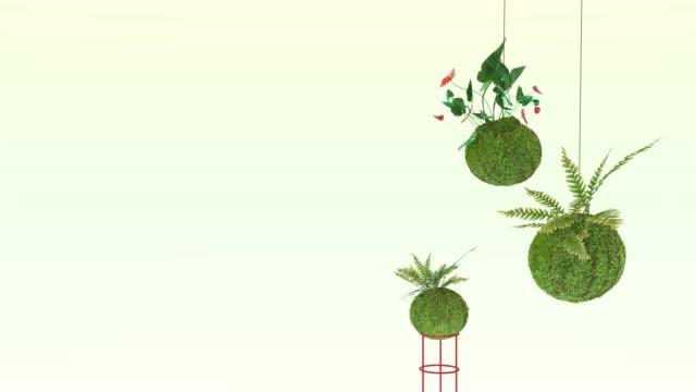 Kokedama Plant. 3D-rendering