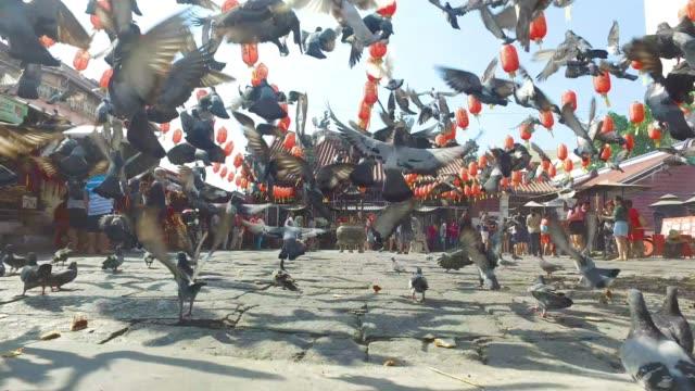 stockvideo's en b-roll-footage met kuan yin temple in penang - maleisië