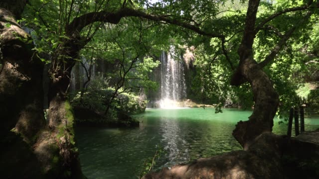 kursunlu waterfall antalya - jungle стоковые видео и кадры b-roll