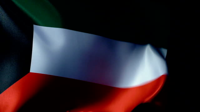 kuwait flag flapping - cartello economico video stock e b–roll