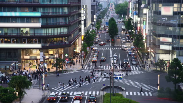 T/L Kyoto City crossing video