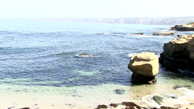 La Jolla California Seal Cove. video
