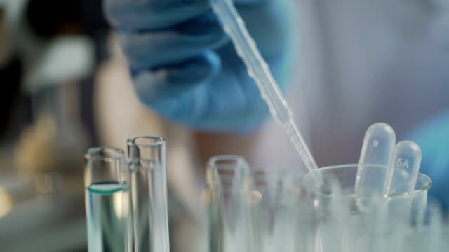 Lab assistant carrying out tests in laboratory, using equipment on work table video