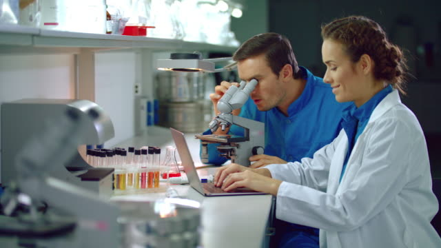 lab researchers working with research microscope. science team working in lab - science research stock videos & royalty-free footage