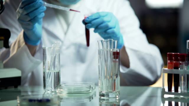 血液サンプルを研究している研究室の科学者が遺伝病を決定するには ビデオ