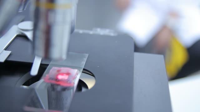 HD : Laboratory Equipment video