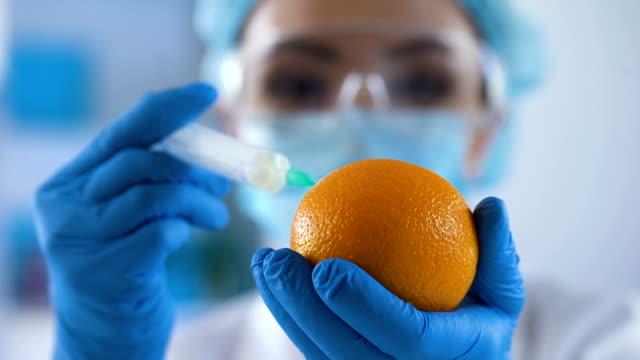 лабораторный эксперт наполнения свежего апельсина химическим веществом, косметологией - expert стоковые видео и кадры b-roll