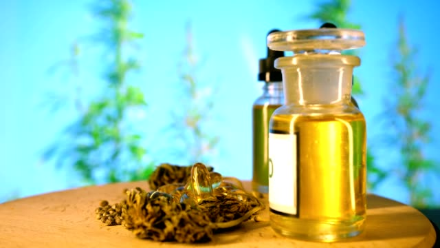 Laboratory of CBD oil, Zedetsin canabis, capsules with oil, marijuana seeds on hemp background. Laboratory of CBD oil, Zedetsin canabis, capsules with oil, marijuana seeds on hemp background. cannabidiol stock videos & royalty-free footage