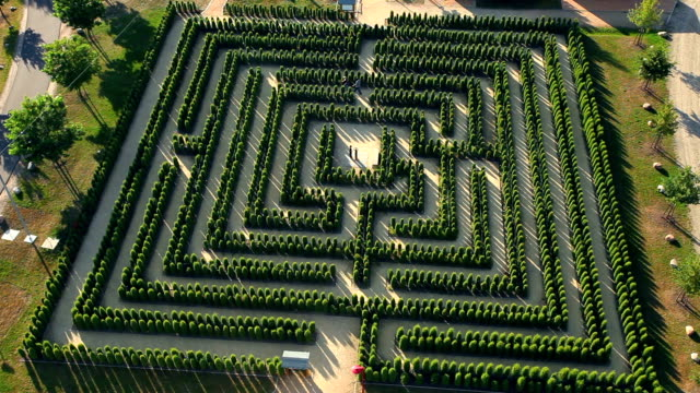 labirinto-time lapse - puzzle video stock e b–roll