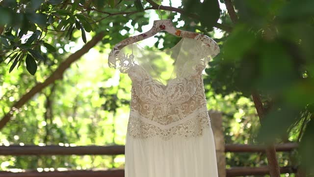 lace wedding dress hanging on tree branches among the foliage