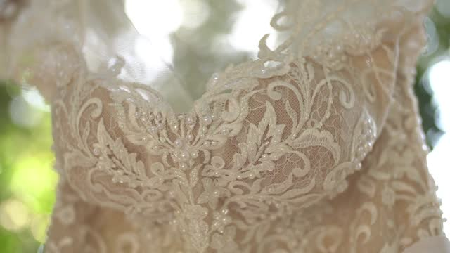 lace wedding dress with a beaded bodice hanging on tree branches among the foliage