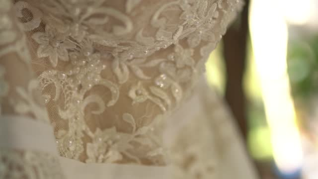 lace wedding dress with beaded bodice hanging on tree branches among the foliage