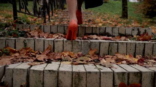 Lady in orange high heel shoes walking upstairs Attractive slim female legs in orange high heels stepping up the stairs on cobblestone stairway in autumn. Closeup. Back view. Elegant woman wearing high heel shoes walking up the stairs on staircase covered with yellow foliage outdoors. human foot stock videos & royalty-free footage