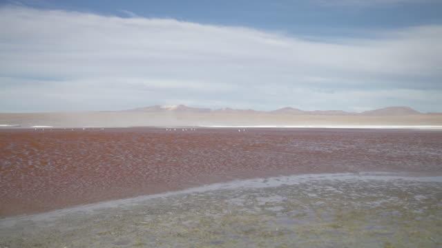 vidéos et rushes de laguna altiplanica - atacama desert - lac salé
