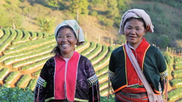 tribù di collina lahu donna - costume tradizionale video stock e b–roll