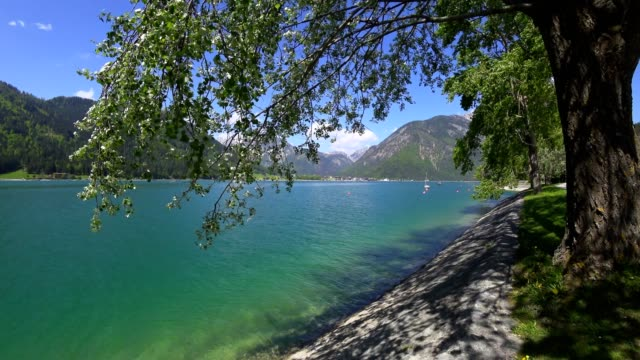 湖 aachensee、チロル、オーストリア、春 - チロル州点の映像素材/bロール