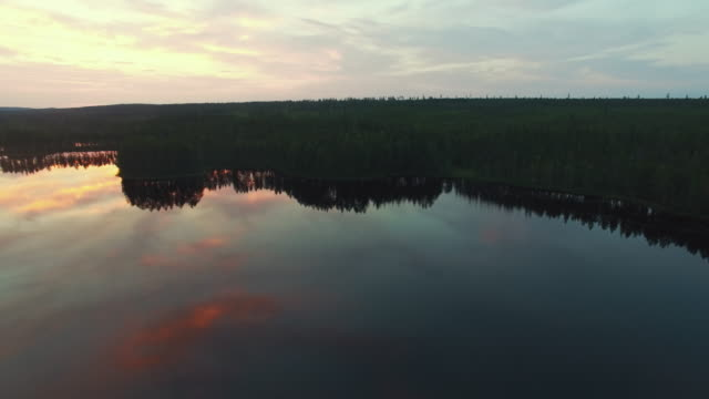 sjön och skogen vid solnedgången flygfoto - pine forest sweden bildbanksvideor och videomaterial från bakom kulisserna
