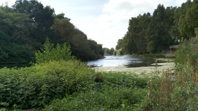 See in London St James Park – Video