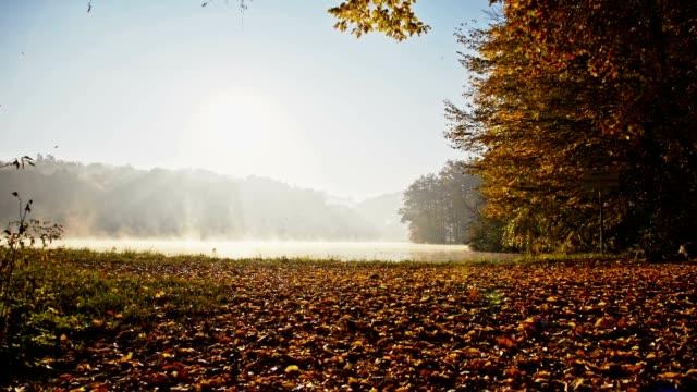 slo mo lake im herbst morgen nebel - laub winter stock-videos und b-roll-filmmaterial