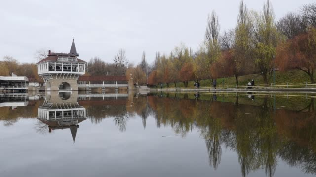 Lake in the autumn park video