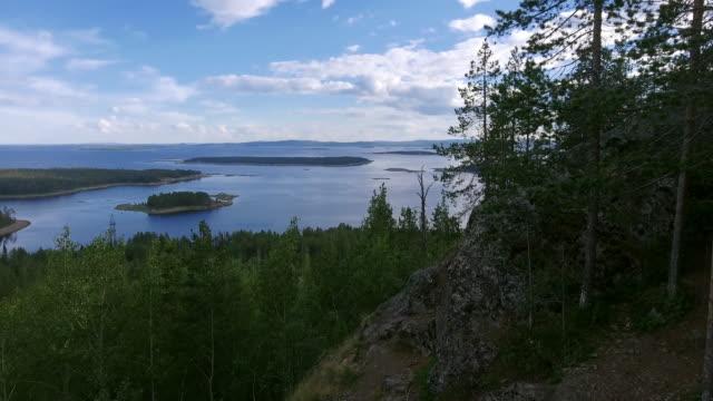 see lake landschaft - kiefernwäldchen stock-videos und b-roll-filmmaterial
