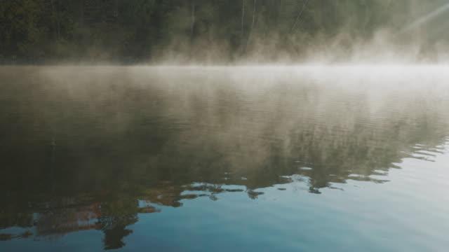 스웨덴의 이른 가을 아침에 호수 - 호수 스톡 비디오 및 b-롤 화면