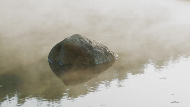 En sjö på en tidig Höstmorgon i Sverige video