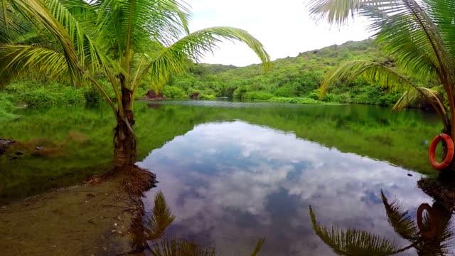 Lake on Arambol beach in Goa, India video