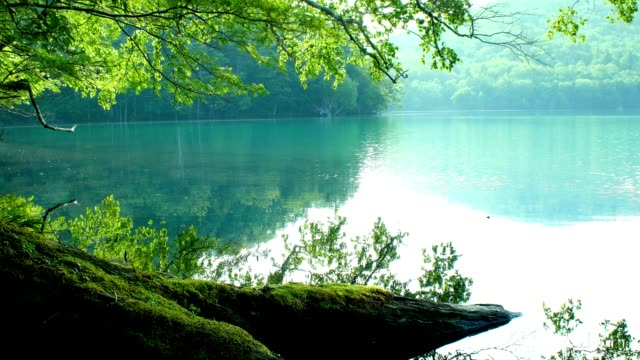 lake onneto, akan nationalpark, hokkaido, japan. - akan nationalpark bildbanksvideor och videomaterial från bakom kulisserna