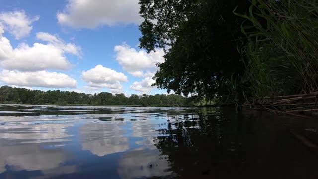 vídeos de stock e filmes b-roll de lake scene - margem do lago